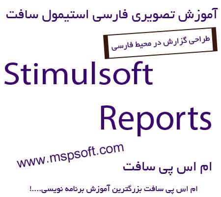 گزارش گیری در استیمول سافت