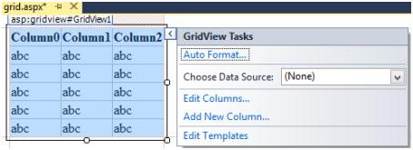 نمایش داده در GridView