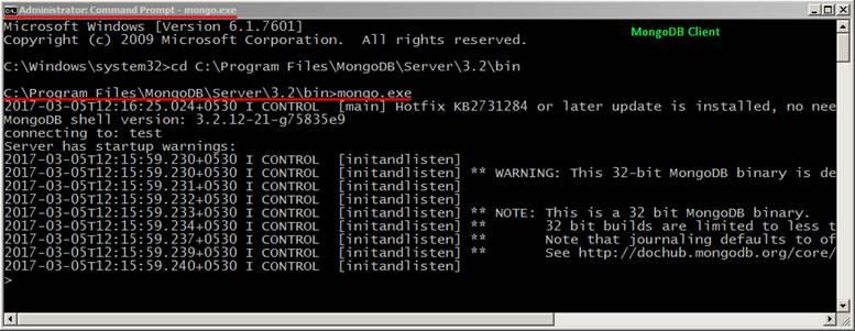 MongoDB Client
